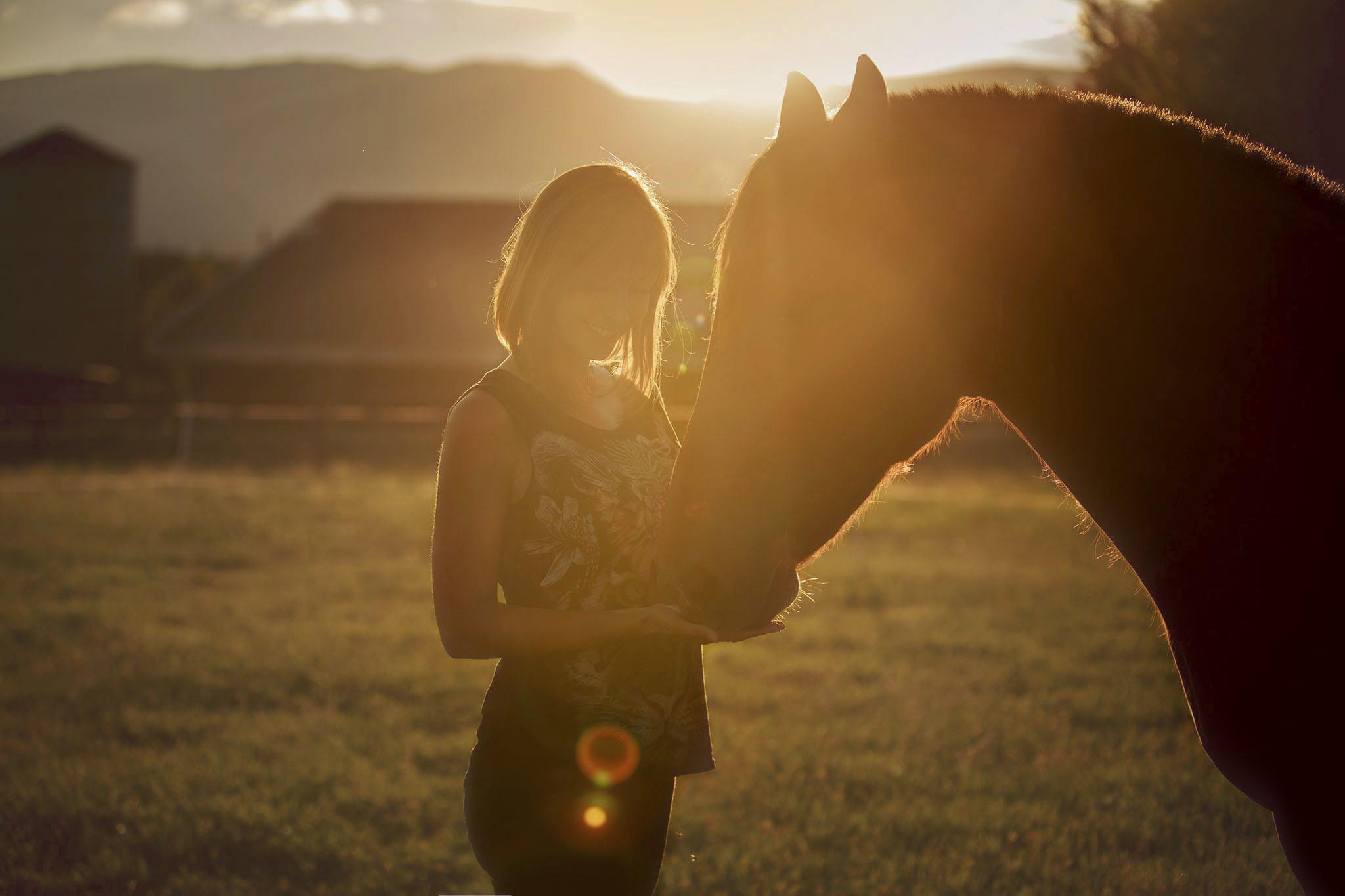 Cheval et jeune femme au couché de soleil, soins énergétique pour animaux