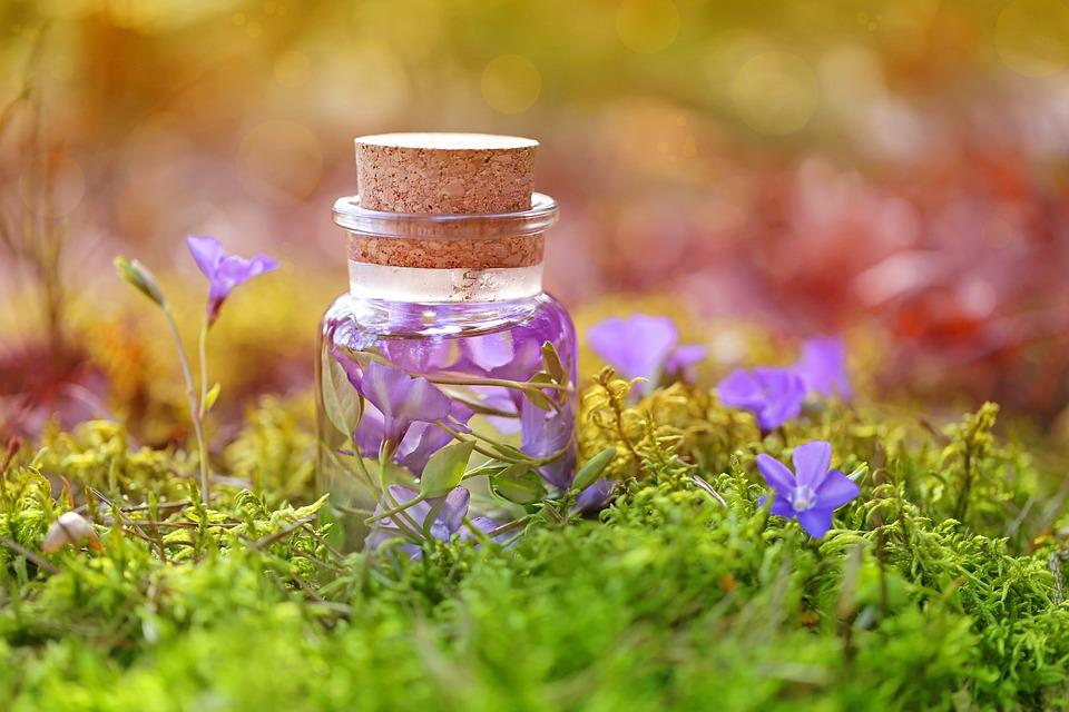 Fleurs violettes dans une bouteille pour un traitement de naturopathie
