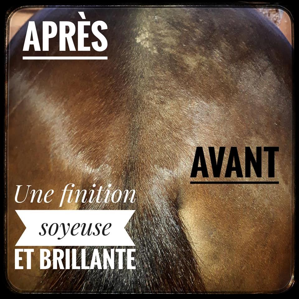 produit naturel soin chevaux
