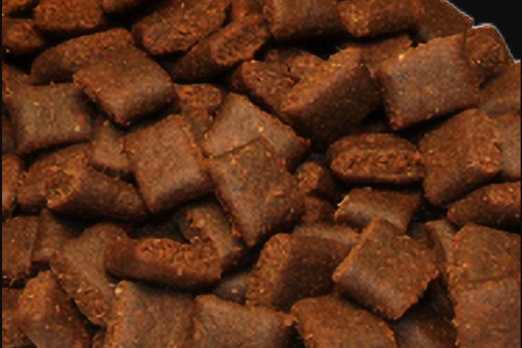 croquettes-chien-sans-cereales