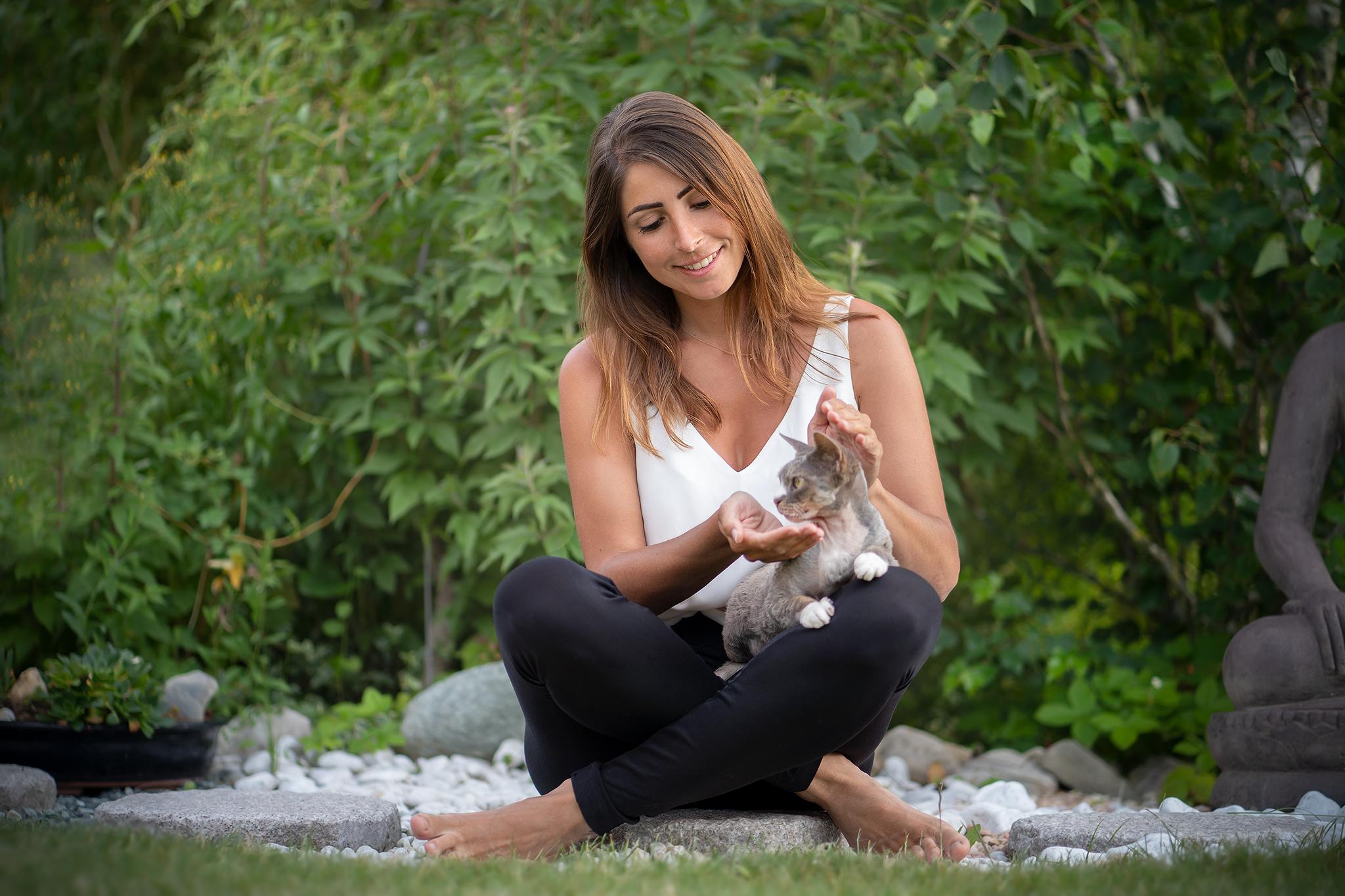 reiki soin animaux