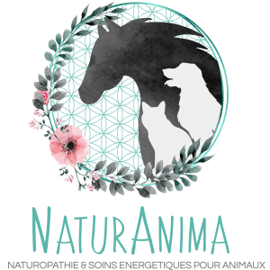 NaturAnima Menu complet