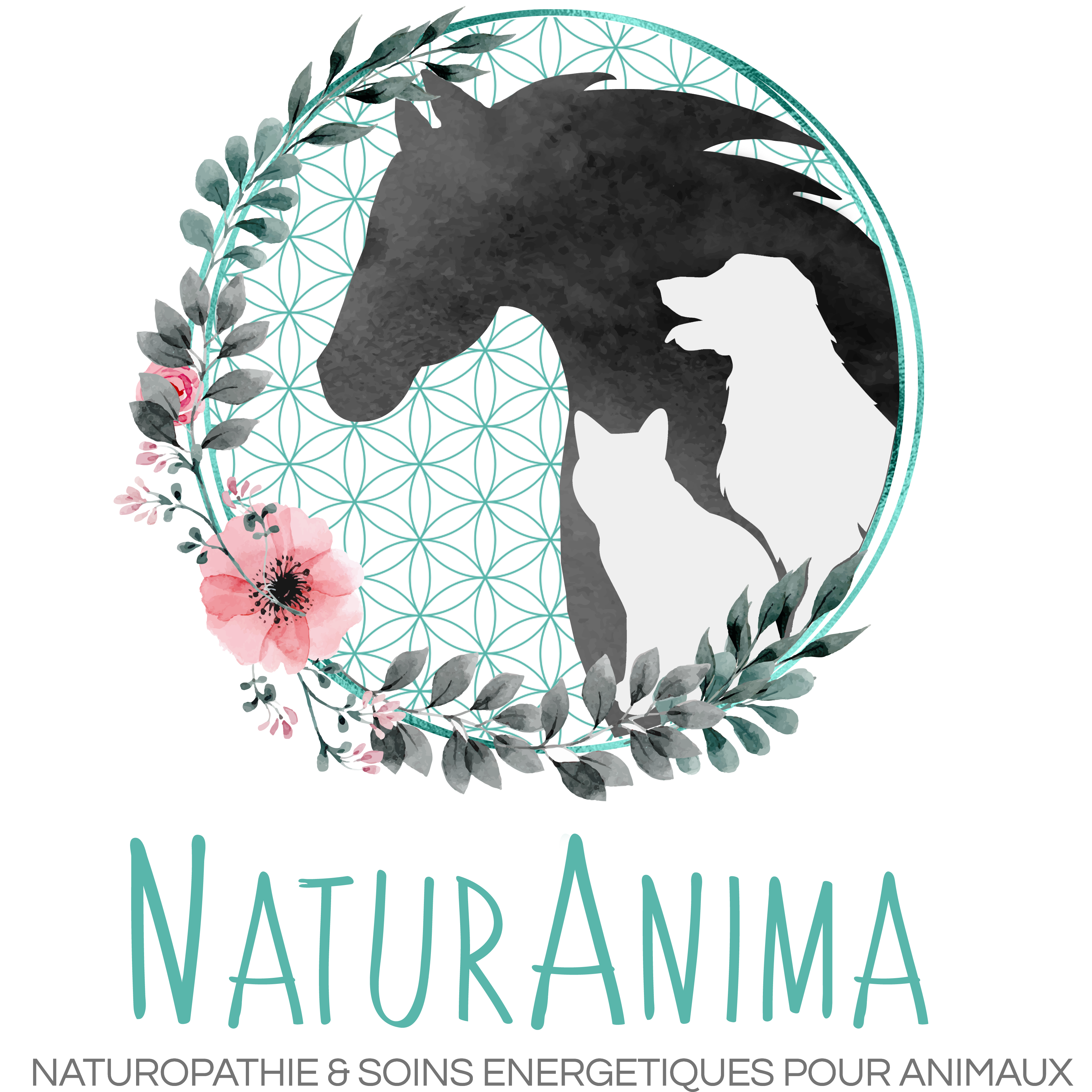 NaturAnima Logo